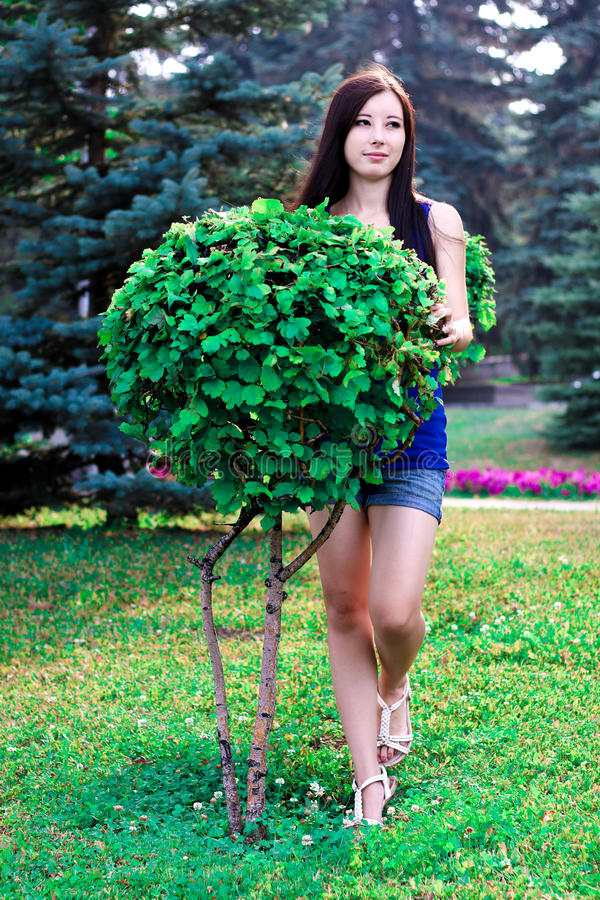 Das schöne Mädchen in voller Länge im Park nahe dekorativen Büschen stockfoto