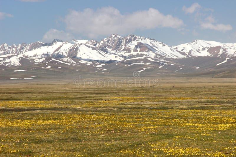 Das schöne szenische an Lied kul See, Naryn mit den Tian Shan-Bergen von Kirgisistan lizenzfreie stockfotos