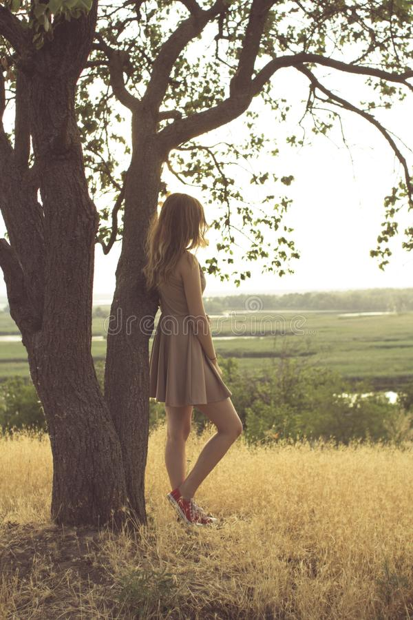 Das schöne träumerische Mädchen, das auf einem Gebiet in einem Kleid bei Sonnenuntergang, eine junge Frau genießt Sommernatur geh lizenzfreie stockfotografie