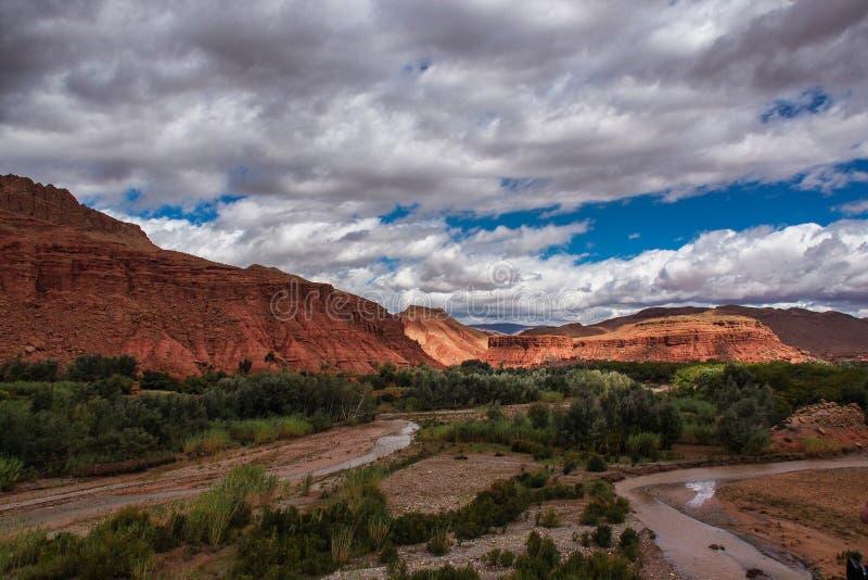 Das sch?ne Rose Valley- - Vallee-DES-Rosen, nahe Ouarzazate, Marokko lizenzfreie stockfotos