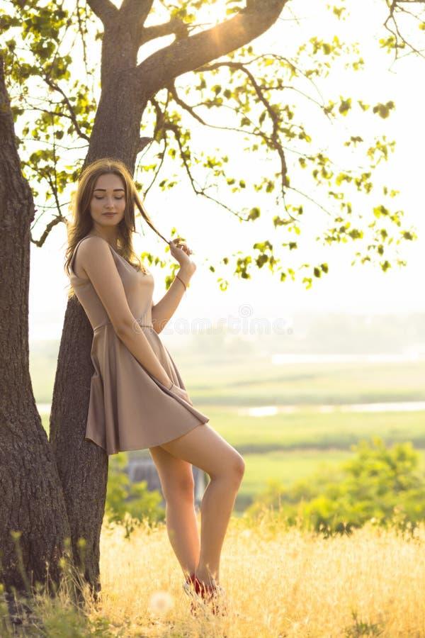 Das sch?ne tr?umerische M?dchen, das auf einem Gebiet in einem Kleid bei Sonnenuntergang, eine junge Frau genie?t Sommernatur geh stockfotografie
