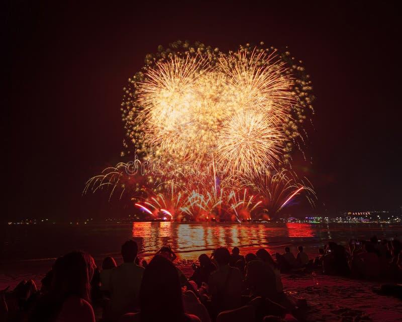 Das Schattenbild von aufpassenden Feuerwerken und von Feiern des Reisenden lizenzfreie stockfotos