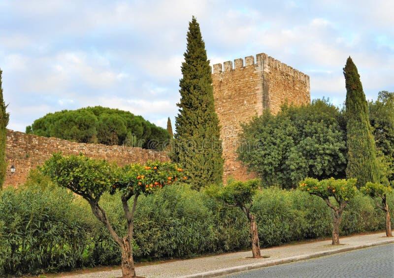 Das Schloss umgeben durch grüne Waldung lizenzfreies stockbild