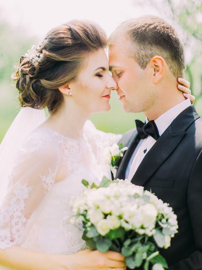 Das Seitennahaufnahmeporträt der Jungvermählten, die am Hintergrund des Feldes Kopf-an-Kopf- stehen stockfoto