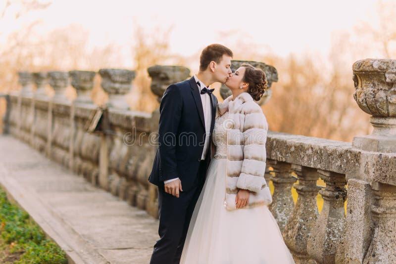 Das Seitenporträt von gerade küssen heiratete am Hintergrund des altmodischen Zauns stockbilder
