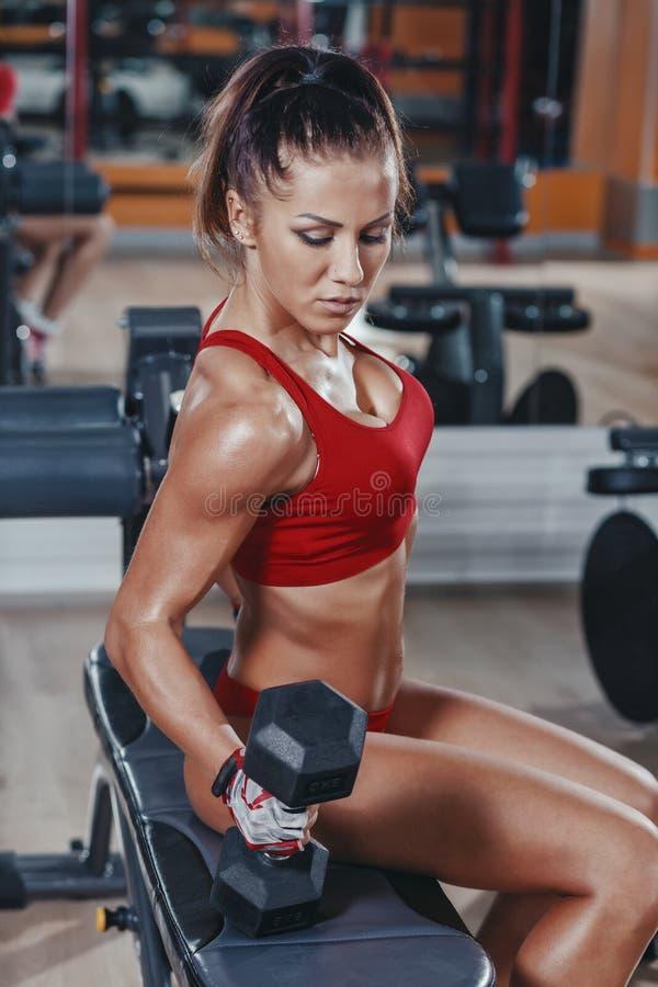 das sexy junge Leichtathletikmädchen, das Bizepsdummköpfe tut, kräuseln Übungen auf Bank in der Turnhalle stockfotografie
