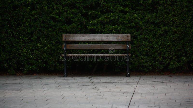 Das Sitzen im Frieden ist Glück stockbilder