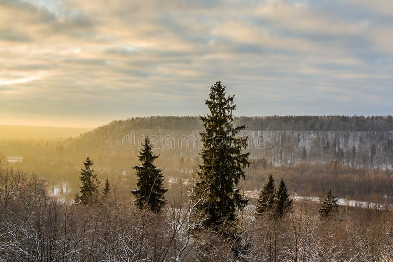 Das Tal des Flusses Gauja im Winter im Sonnenuntergang, Natur lizenzfreie stockbilder