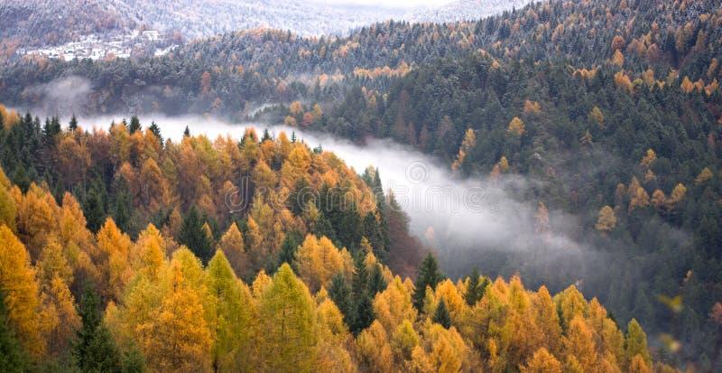 Das Tal des Flusses wird mit Wolken und Nebel bedeckt, die den Winter vom Herbst zu seinem Ende teilen lizenzfreie stockfotografie