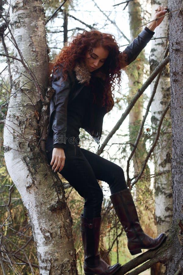 Das Träumen der Frau in den Stiefeln mit dem gelockten Haar wirft auf altem Tannenbaum auf lizenzfreie stockfotografie