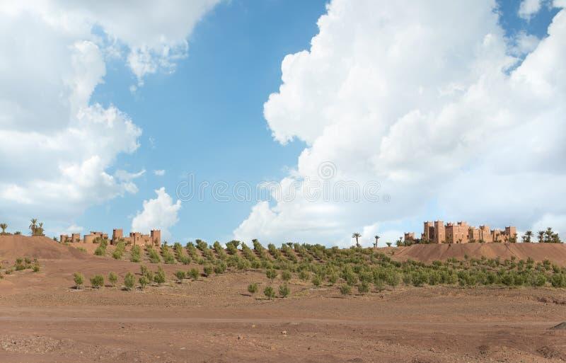 Das traditionelle Haus in der arabischen Art mit blauem Himmel und grünem f lizenzfreie stockbilder