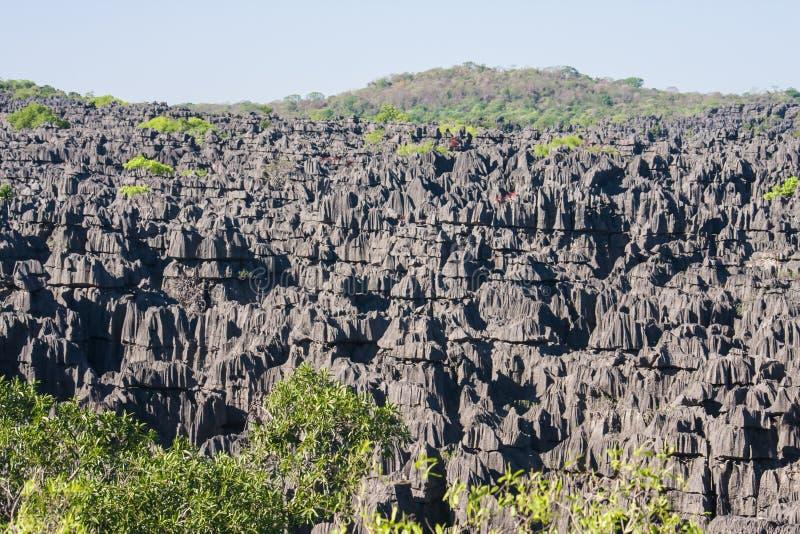 Das Tsingy von Ankarana lizenzfreies stockbild