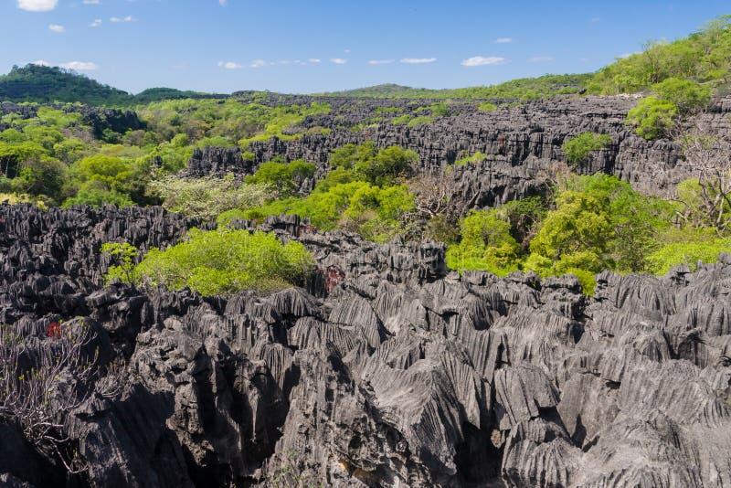 Das Tsingy von Ankarana stockfotografie