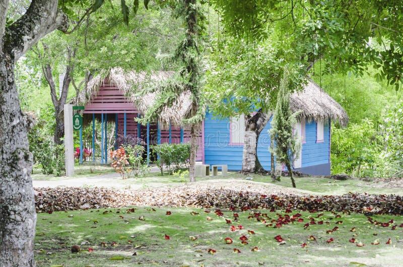 Das typische dominikanische Landhaus, das durch Vegetation mit schönen grünen Tönen umgeben wurde, malte blau und mit Palme bedec lizenzfreies stockfoto