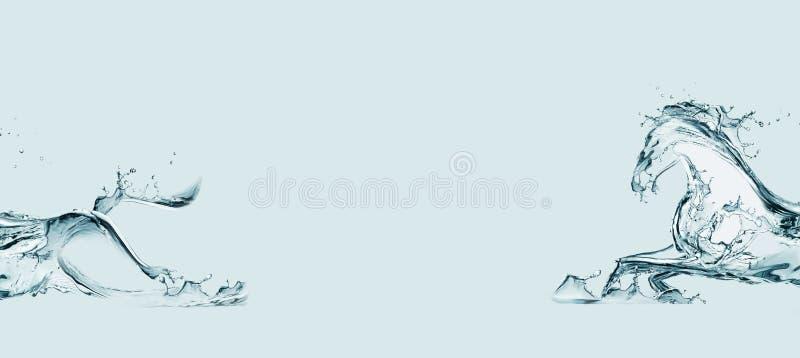 Das Wasser-Pferd lizenzfreies stockfoto