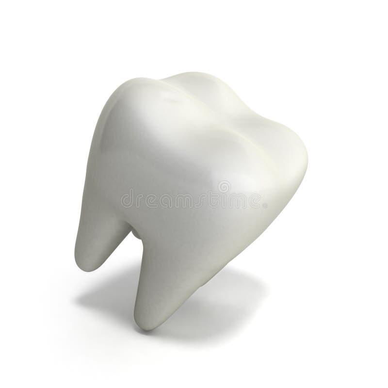 Das Weiß werden des menschlichen Zahnes 3d übertragen auf Weiß stock abbildung