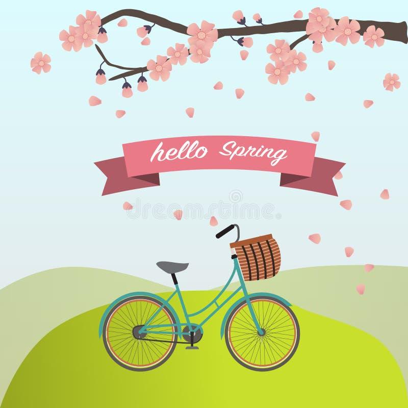 Das Weinlesefahrrad mit Kirschblüte lizenzfreie abbildung