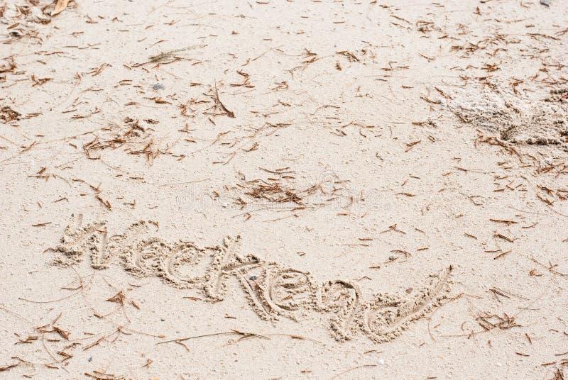Das Wort ` Wochenende ` wird auf Strandsand mit Blättern der braunen Kiefer auf ihm in Winkelsichtklage für Feiertagsatmosphäre g stockbilder