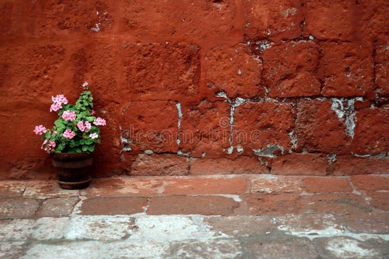 Das Yard des Klosters lizenzfreies stockbild