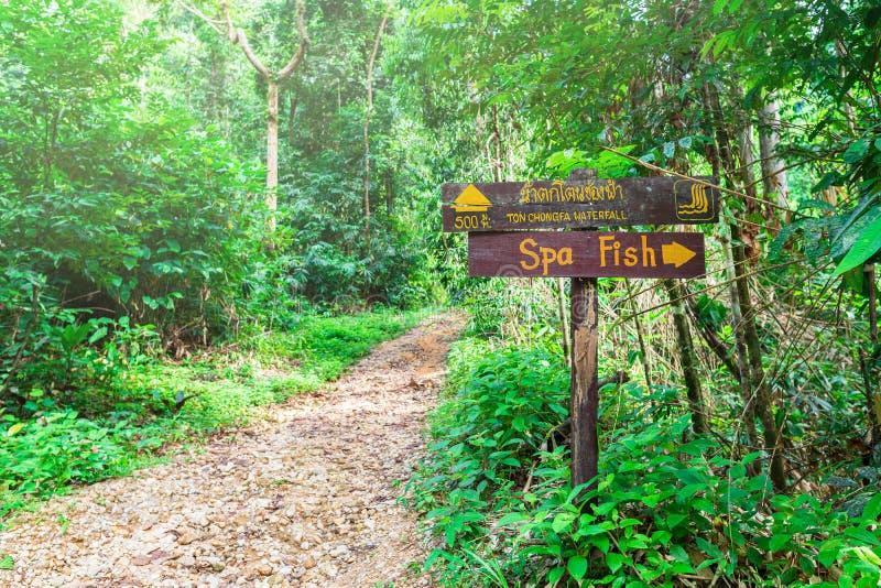 Das Zeichen des Fischbadekurortes im Wald nahe einem Gebirgsfluss Viele Gr?n Thailand, Straße zu Chong Fahrenheits-Wasserfall stockfotografie