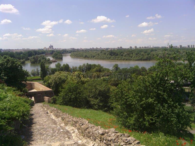 Das Zusammenströmen der Flüsse Sava und Donaus lizenzfreies stockfoto