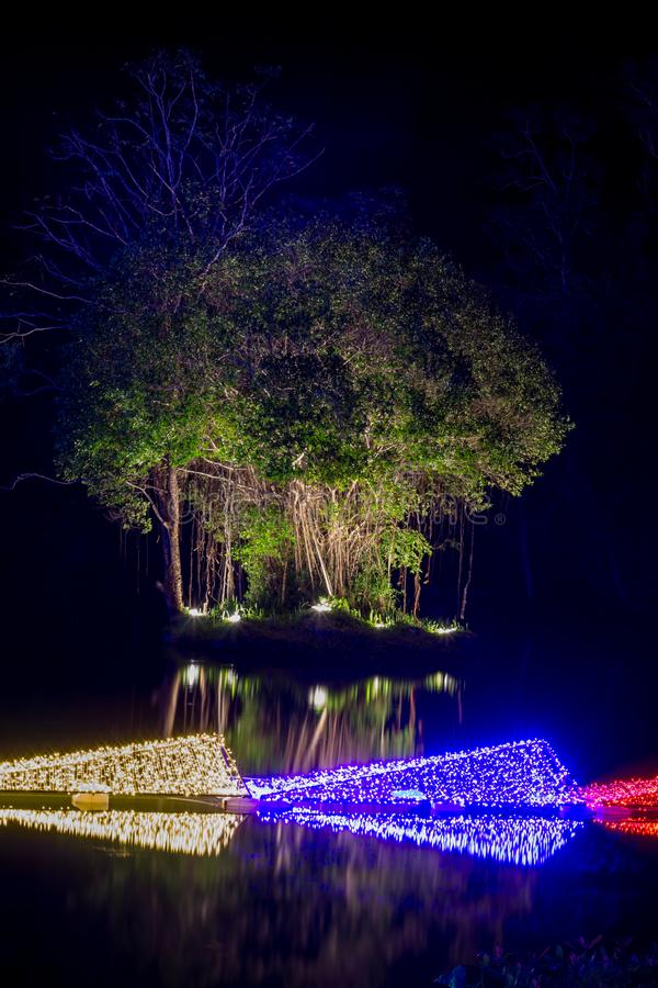 Prachinburi,Thailand-January11,2018:LED Light up in the pond at Dasada Gallery. Dasada Gallery plays host to the Giving Blossom Festival from Dec2,2017 until stock images