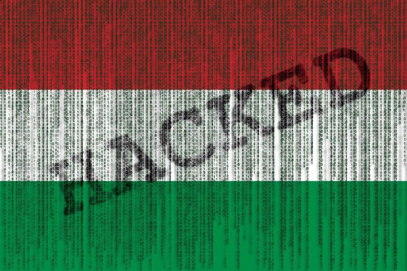 Data hackad Ungernflagga Ungersk flagga med binär kod för grunge stock illustrationer
