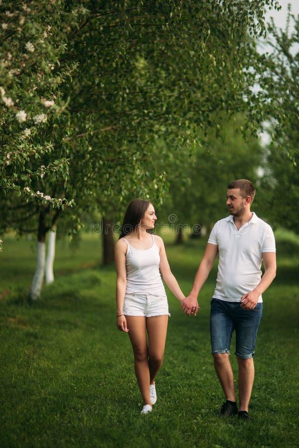 Datando nel parco Ami le coppie che camminano insieme sull'erba vicino al lago Romance ed amore fotografie stock libere da diritti