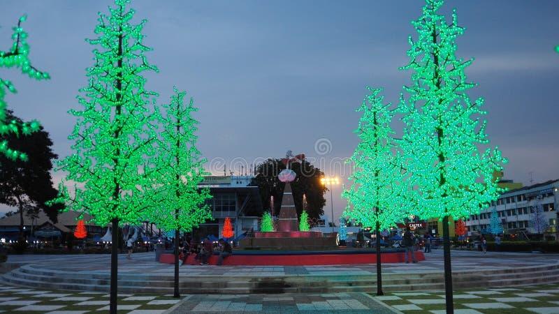 Dataran batupahat med det ljusa trädet royaltyfri bild