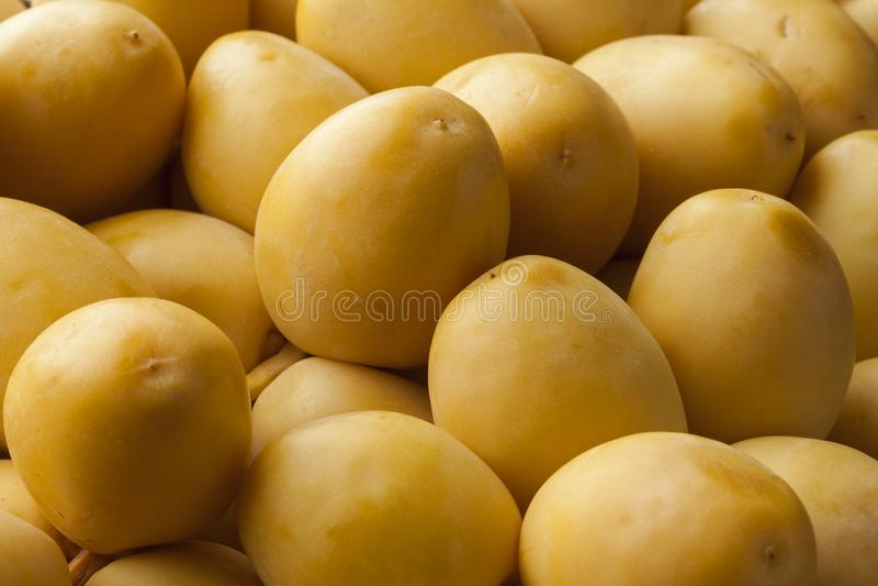 Datas amarelas frescas foto de stock royalty free