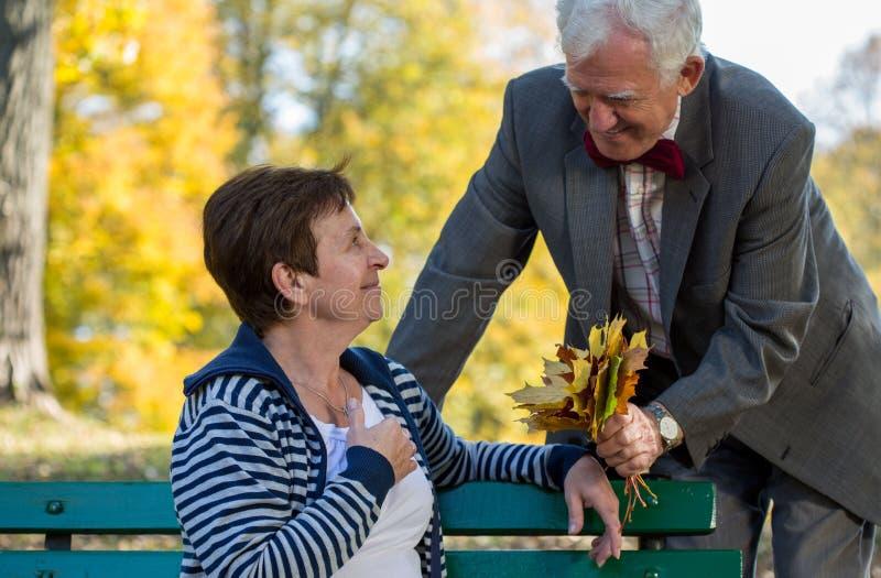 Datazione senior delle coppie nel parco immagine stock