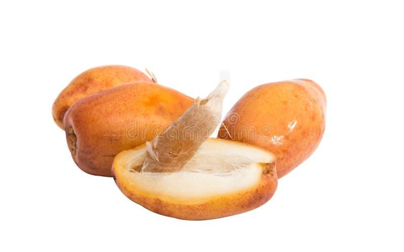 Date della frutta fresca fotografia stock