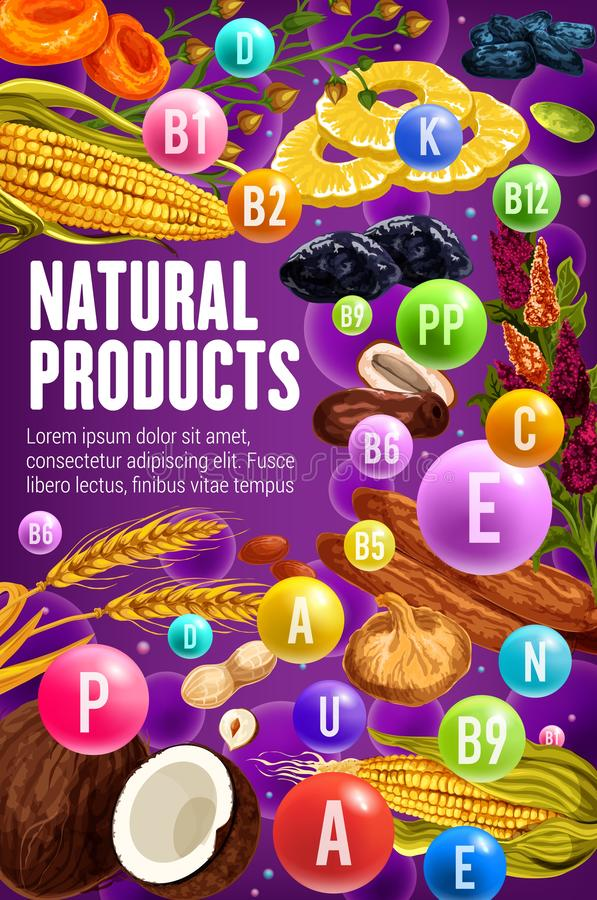 Date, fig, peanut, hazelnut and cereals. Vitamins. Dried fruits, nuts and cereals rich of vitamins and minerals vector design. Health benefits and nutrition vector illustration