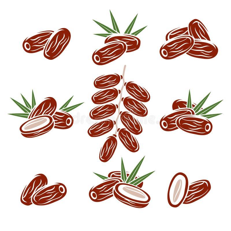 Dates fruit set. Vector. Illustration fruit vector illustration