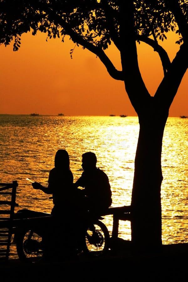 Datierung unter den Strandbaum stockfoto