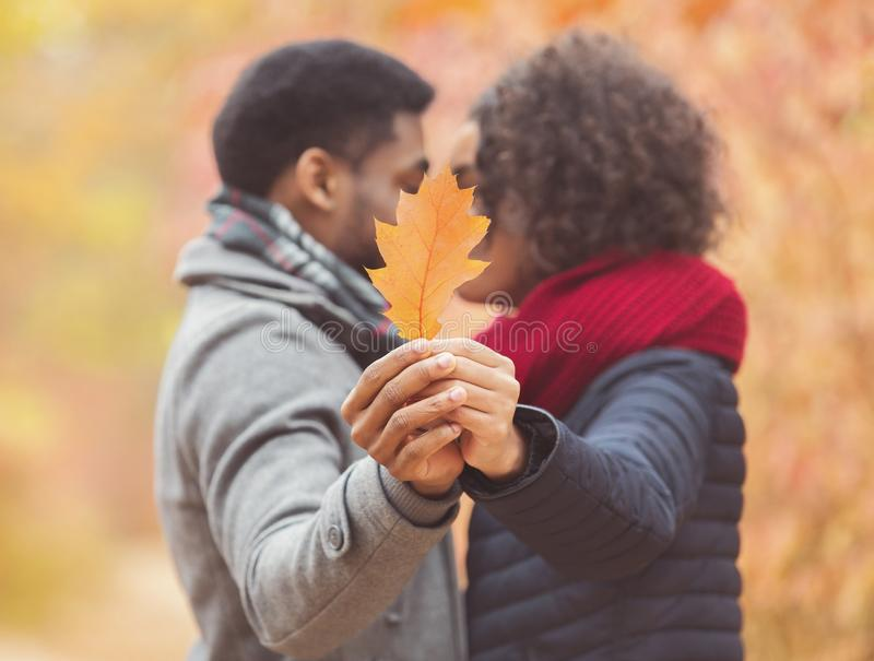 Afro couple kissing, closing with oak leaf stock images