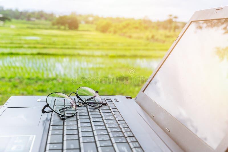 Datorbärbar dator med exponeringsglas med lantlig risfältplatsbakgrund arkivfoton