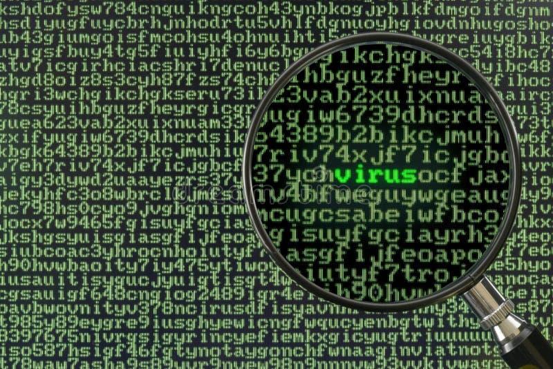 datorscanningvirus royaltyfri foto