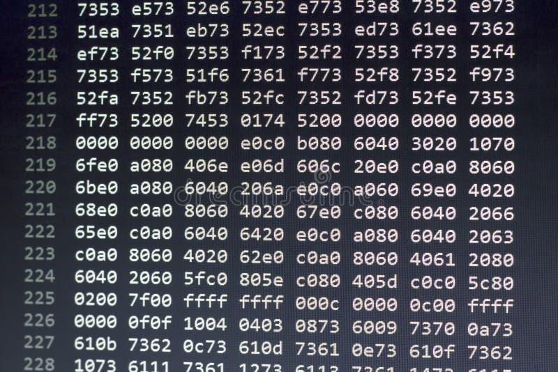 Datos del archivo binario en números hexadecimales foto de archivo