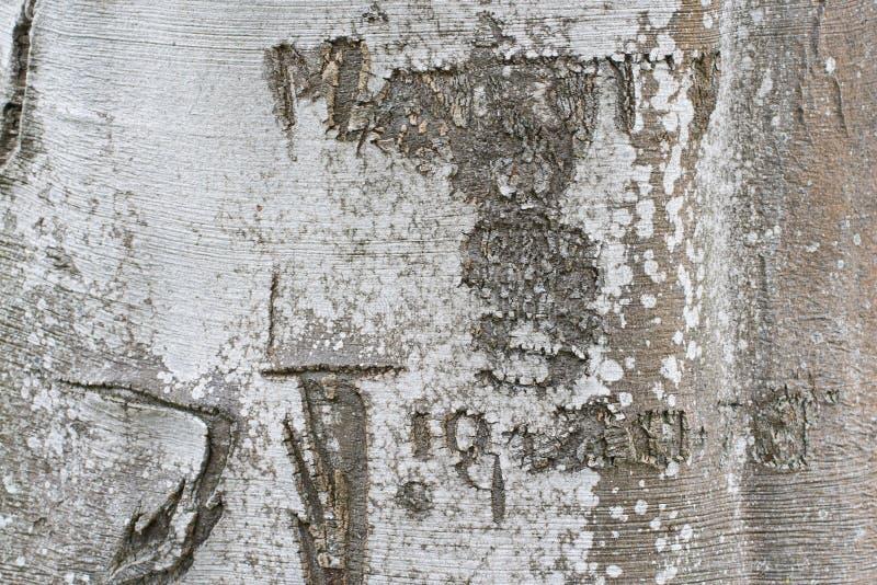 Datum & Initialen in een Boomboomstam die wordt gesneden royalty-vrije stock afbeeldingen