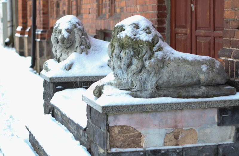 Daugavpils, Latvia, Europe. Snow covered on the lion statue. Winter is one of the best times to go in long walk. Cold temperatures. Daugavpils, Latvia, Europe stock image