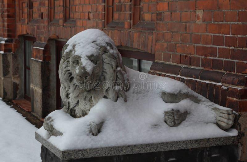 Daugavpils, Letland, Europa Sneeuw op het leeuwstandbeeld dat wordt behandeld De winter is één van de beste tijden om in lange ga royalty-vrije stock afbeelding