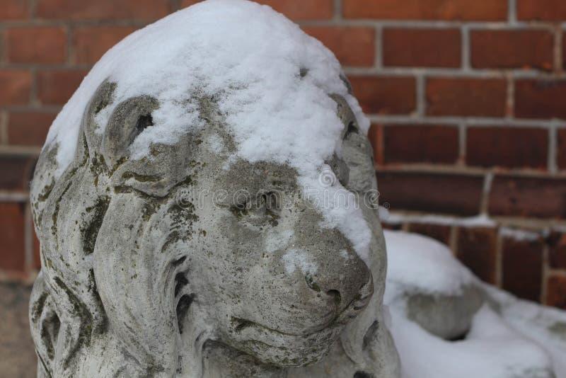 Daugavpils, Letland, Europa Sneeuw op het leeuwstandbeeld dat wordt behandeld De winter is één van de beste tijden om in lange ga royalty-vrije stock foto's