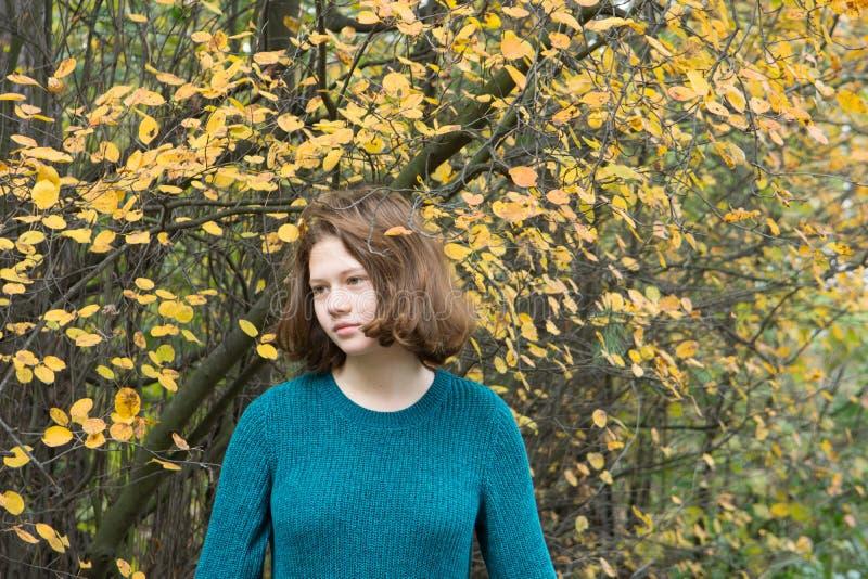 Dauhter im Herbstwald lizenzfreie stockbilder