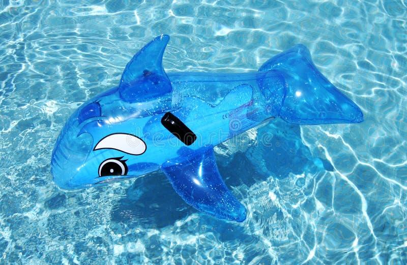 Dauphin gonflable sur la piscine bleue photographie stock libre de droits