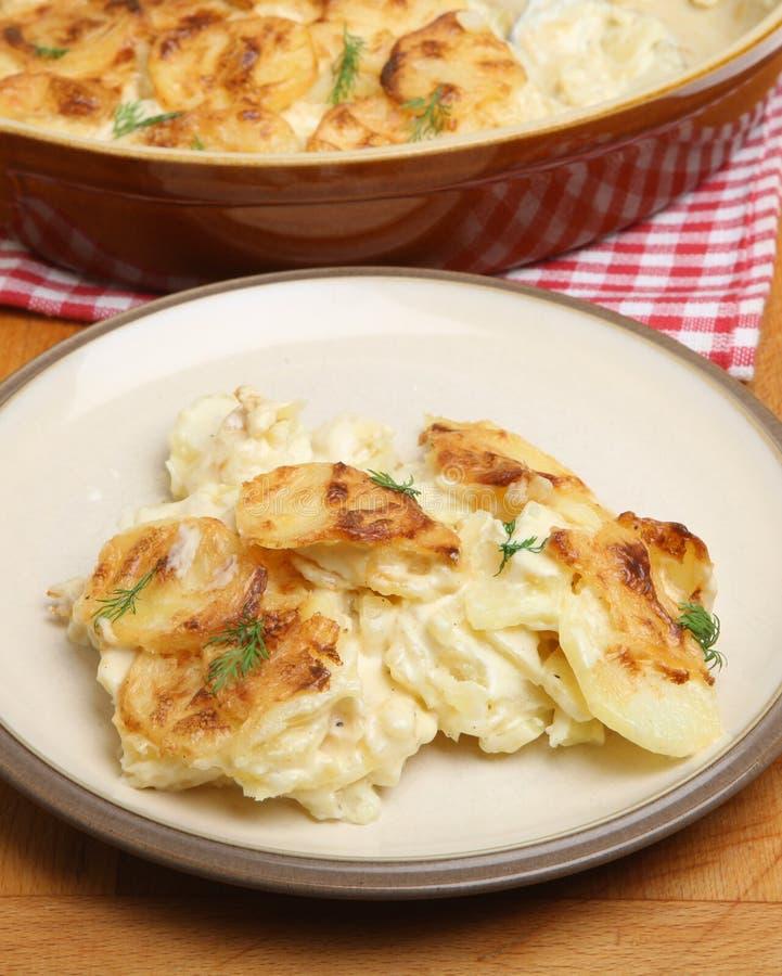 Dauphinois o patate del gratin immagini stock