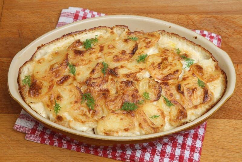 Dauphinois ou pommes de terre de gratin images stock