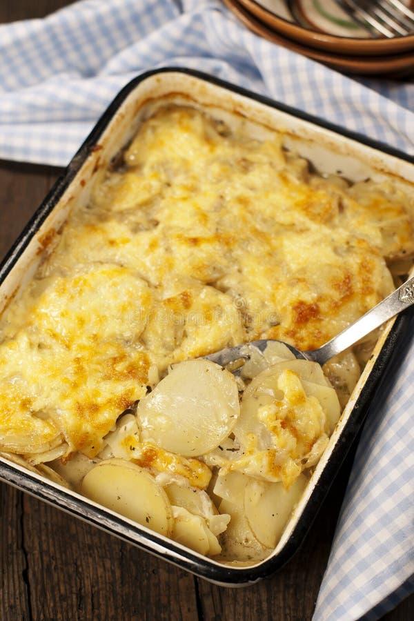 Dauphinoise del gratin della patata fotografia stock