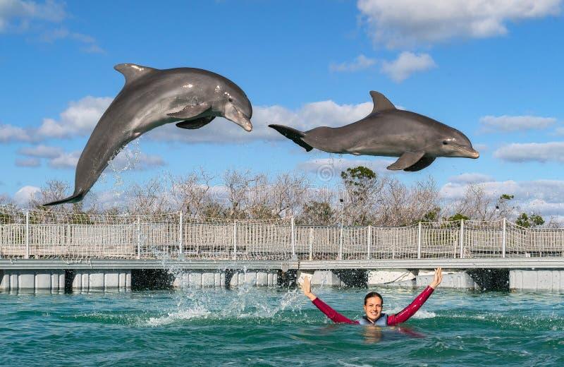 Dauphins branchants Natation de femme avec des dauphins dans l'eau bleue image libre de droits