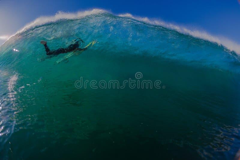Dauphins d'onde submergés par surfer photographie stock libre de droits